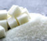 All You need to know about sugar and weight loss
